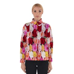 Rose Color Beautiful Flowers Winterwear