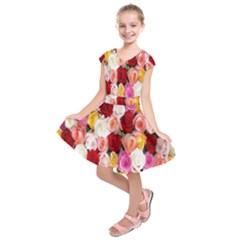 Rose Color Beautiful Flowers Kids  Short Sleeve Dress