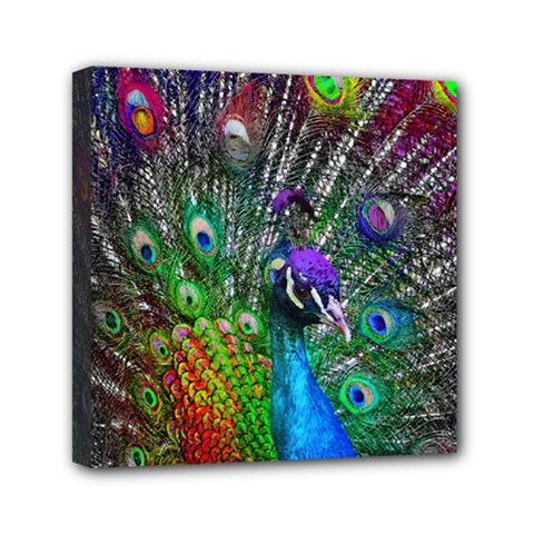 3d Peacock Pattern Mini Canvas 6  X 6