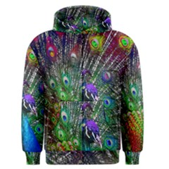 3d Peacock Pattern Men s Zipper Hoodie