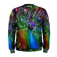 3d Peacock Pattern Men s Sweatshirt