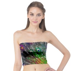 3d Peacock Pattern Tube Top