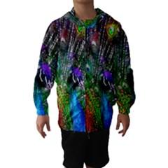 3d Peacock Pattern Hooded Wind Breaker (kids)