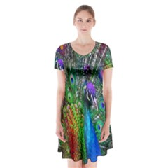 3d Peacock Pattern Short Sleeve V Neck Flare Dress