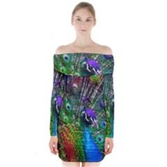 3d Peacock Pattern Long Sleeve Off Shoulder Dress