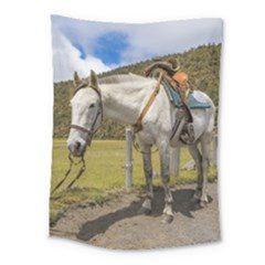 White Horse Tied Up At Cotopaxi National Park Ecuador Medium Tapestry
