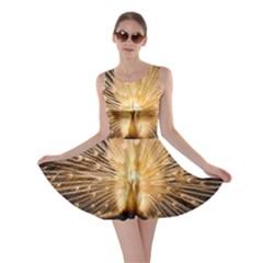 3d Beautiful Peacock Skater Dress