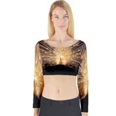 3d Beautiful Peacock Long Sleeve Crop Top