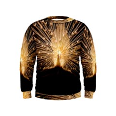 3d Beautiful Peacock Kids  Sweatshirt
