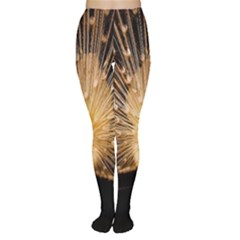 3d Beautiful Peacock Women s Tights