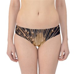 3d Beautiful Peacock Hipster Bikini Bottoms