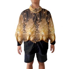 3d Beautiful Peacock Wind Breaker (kids)