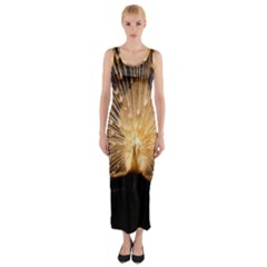 3d Beautiful Peacock Fitted Maxi Dress