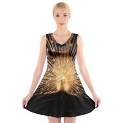 3d Beautiful Peacock V Neck Sleeveless Skater Dress