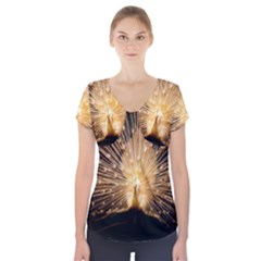 3d Beautiful Peacock Short Sleeve Front Detail Top