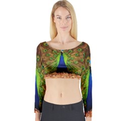 3d Peacock Bird Long Sleeve Crop Top