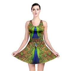 3d Peacock Bird Reversible Skater Dress
