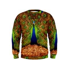 3d Peacock Bird Kids  Sweatshirt