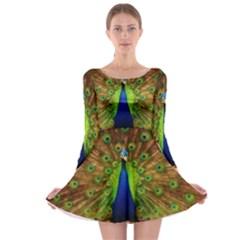 3d Peacock Bird Long Sleeve Skater Dress