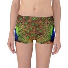 3d Peacock Bird Reversible Bikini Bottoms