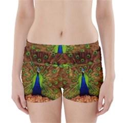 3d Peacock Bird Boyleg Bikini Wrap Bottoms
