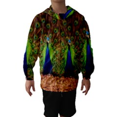 3d Peacock Bird Hooded Wind Breaker (kids)