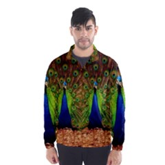 3d Peacock Bird Wind Breaker (Men)