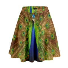 3d Peacock Bird High Waist Skirt