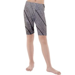 Sea Fan Coral Intricate Patterns Kids  Mid Length Swim Shorts