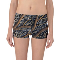 Trees Forests Pattern Boyleg Bikini Bottoms
