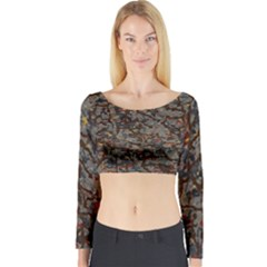A Complex Maze Generated Pattern Long Sleeve Crop Top