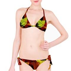 3d Red Abstract Fern Leaf Pattern Bikini Set