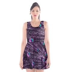 Bird Color Purple Passion Peacock Beautiful Scoop Neck Skater Dress