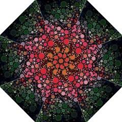 Circle Abstract Straight Umbrellas