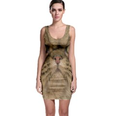 Cute Persian Cat face In Closeup Sleeveless Bodycon Dress