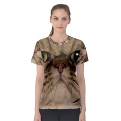 Cute Persian Cat Face In Closeup Women s Sport Mesh Tee