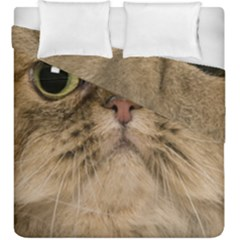 Cute Persian Cat Face In Closeup Duvet Cover Double Side (king Size)
