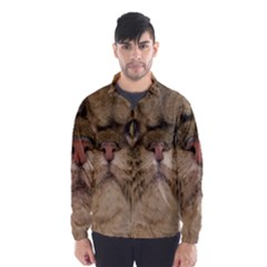 Cute Persian Cat Face In Closeup Wind Breaker (men)