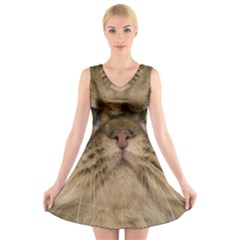 Cute Persian Cat Face In Closeup V Neck Sleeveless Skater Dress