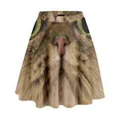 Cute Persian Cat Face In Closeup High Waist Skirt