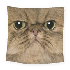 Cute Persian Cat Face In Closeup Square Tapestry (large)