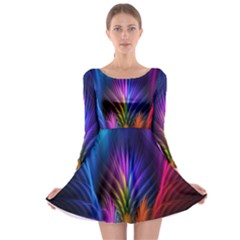 Bird Feathers Rainbow Color Pink Purple Blue Orange Gold Long Sleeve Skater Dress
