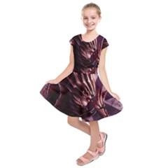 Fantasy Art Legend Of The Five Rings Steve Argyle Fantasy Girls Kids  Short Sleeve Dress