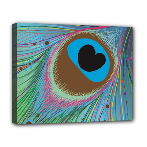 Peacock Feather Lines Background Deluxe Canvas 20  x 16