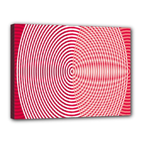 Circle Line Red Pink White Wave Canvas 16  x 12