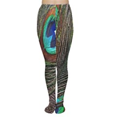 Peacock Feathers Women s Tights