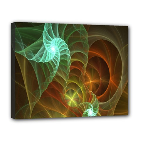 Art Shell Spirals Texture Canvas 14  x 11