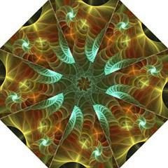 Art Shell Spirals Texture Straight Umbrellas