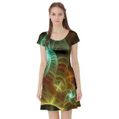 Art Shell Spirals Texture Short Sleeve Skater Dress