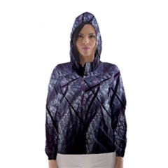 Fractal Art Picture Definition  Fractured Fractal Texture Hooded Wind Breaker (women)